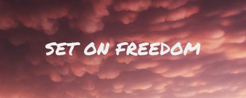 Set on Freedom application banner 2 (1)